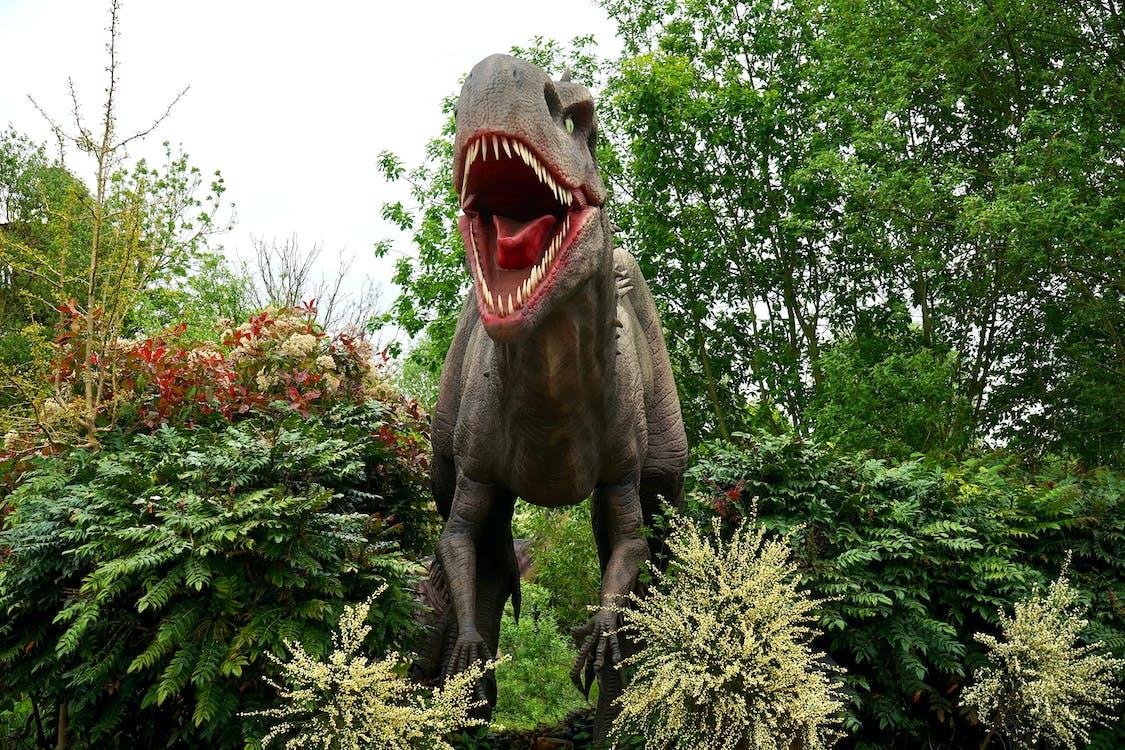 Brown T-rex Statue