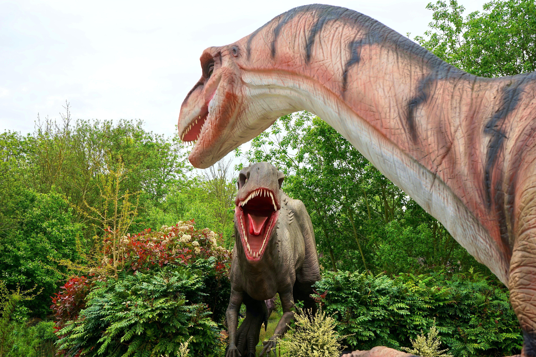 Ingyenes stockfotó állat, dinoszaurusz, fák, fogak témában