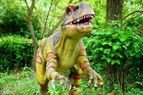 Darmowe zdjęcie z galerii z cichy, dinozaur, drzewa, figura