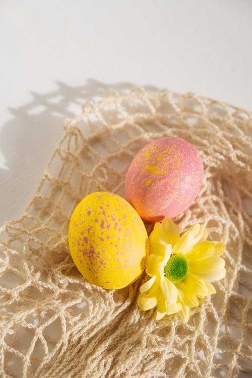 Photos gratuites de à pois, fleur jaune, jaune, Joyeuses Pâques