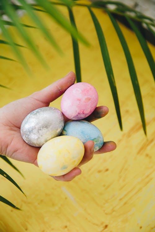 Hand Holding Easter Eggs