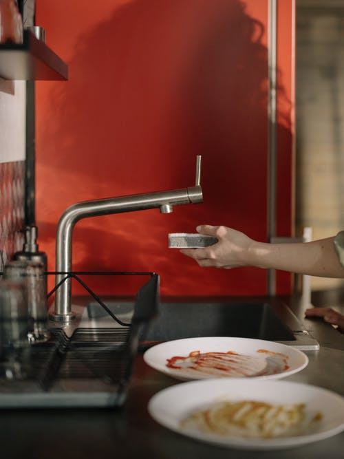 Person Pouring Water on White Ceramic Plate