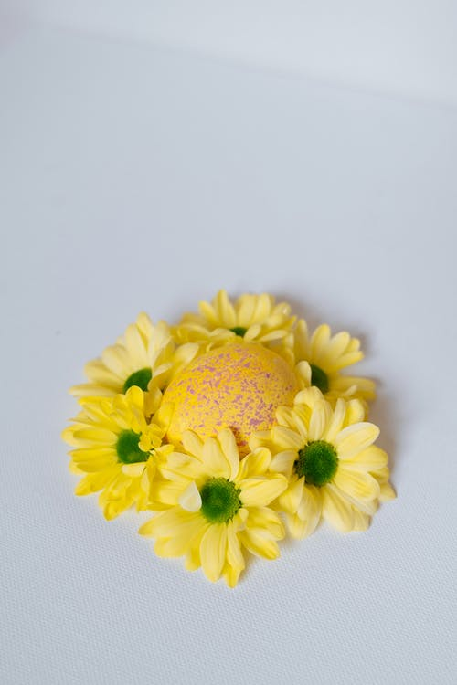 Yellow Flower on White Surface