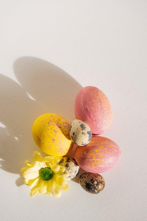 上色, 剪下的圖樣, 復活節, 復活節彩蛋 的 免費圖庫相片