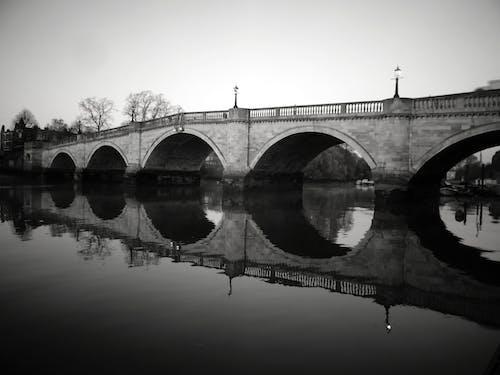 Imagine de stoc gratuită din alb-negru, apă, arbori, barcă