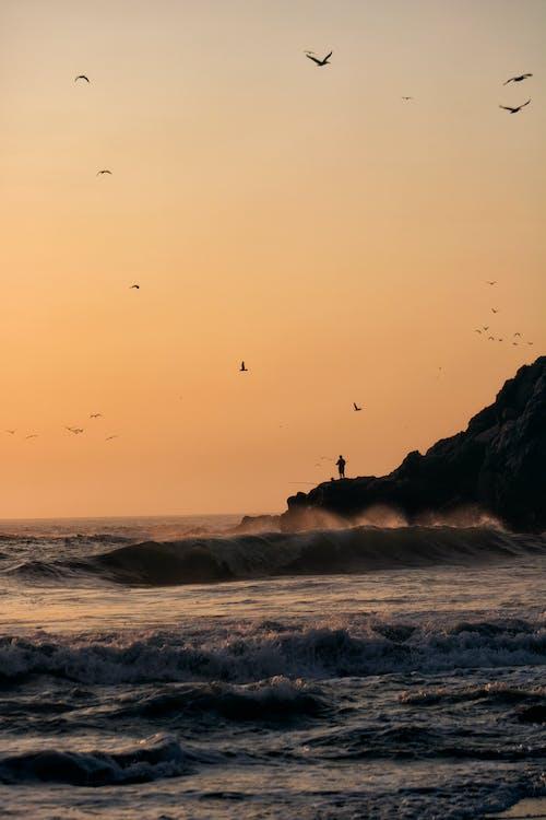 Immagine gratuita di acqua, alba, cielo