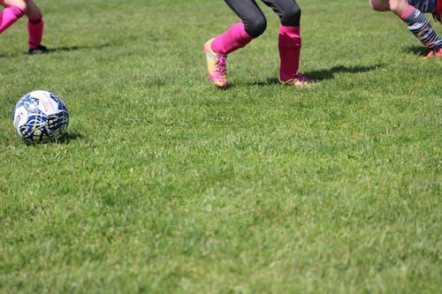 ゲーム, サッカーの無料の写真素材
