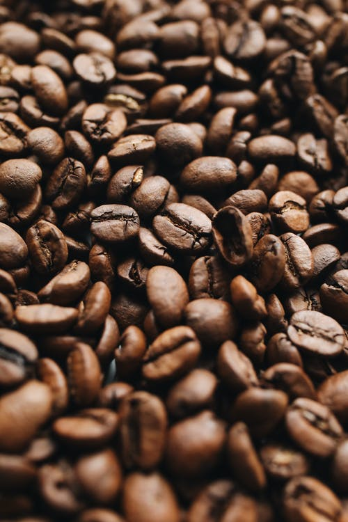 Fotobanka sbezplatnými fotkami na tému arabica, aróma, aromatický, cappuccino