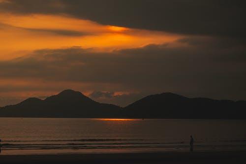 Immagine gratuita di alba, ambiente, bagnasciuga