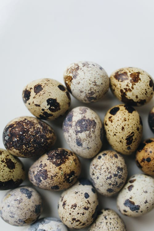 Close-Up Photo Of Quail Eggs