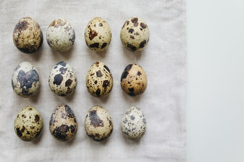 Photo Of Quail Eggs On Fabric Surface