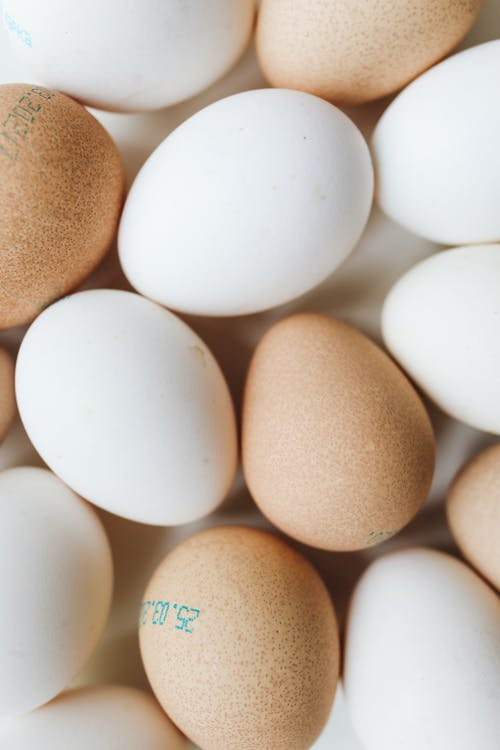 Close-Up Photo Of White And Brown Egg