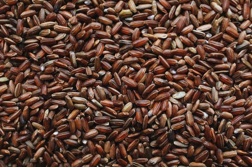 Close-Up Photo Of Brown Rice