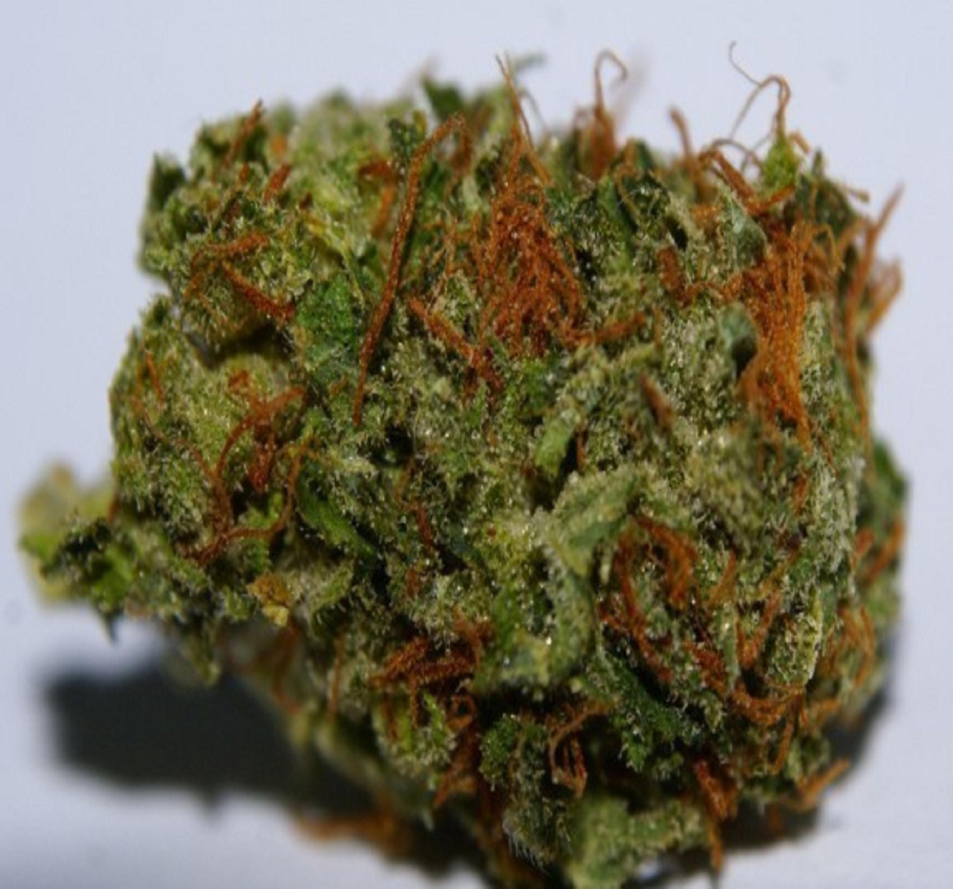Free stock photo of buy marijuana online, buy marijuana online canada