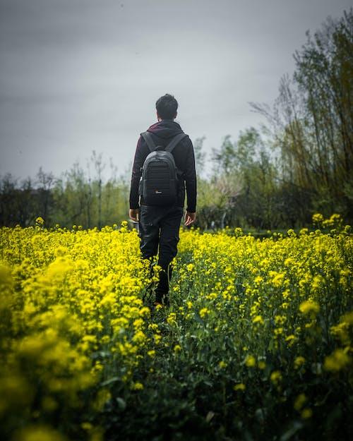 Photo Of Man Walking On Flower Field