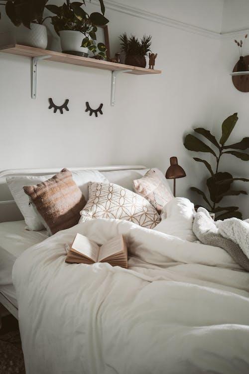 Fotos de stock gratuitas de acogedor, adentro, almohadas