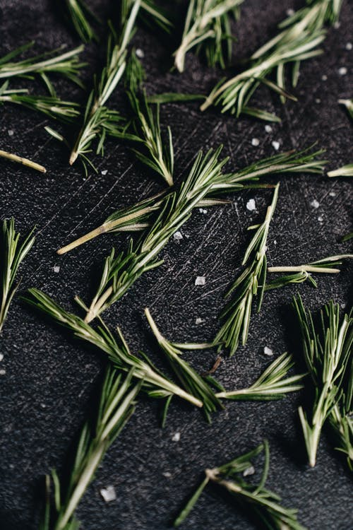 Close-Up Photo Of Thyme Leaves
