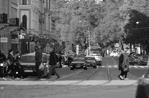 Foto profissional grátis de alameda, andar, aparência, área
