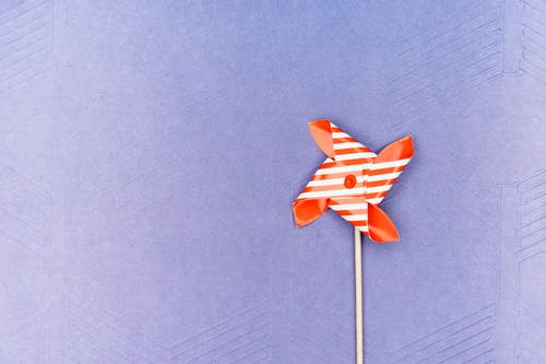 Red and White Paper Flower on Blue Textile
