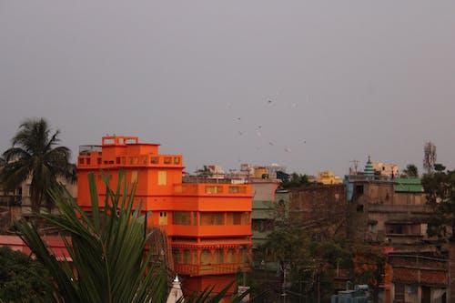 Free stock photo of nature, scenery, urban background