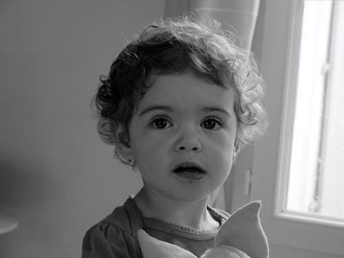 Free stock photo of child