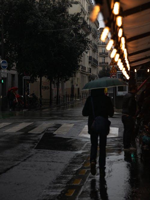 Foto stok gratis bangunan, basah, di luar ruangan, gedung