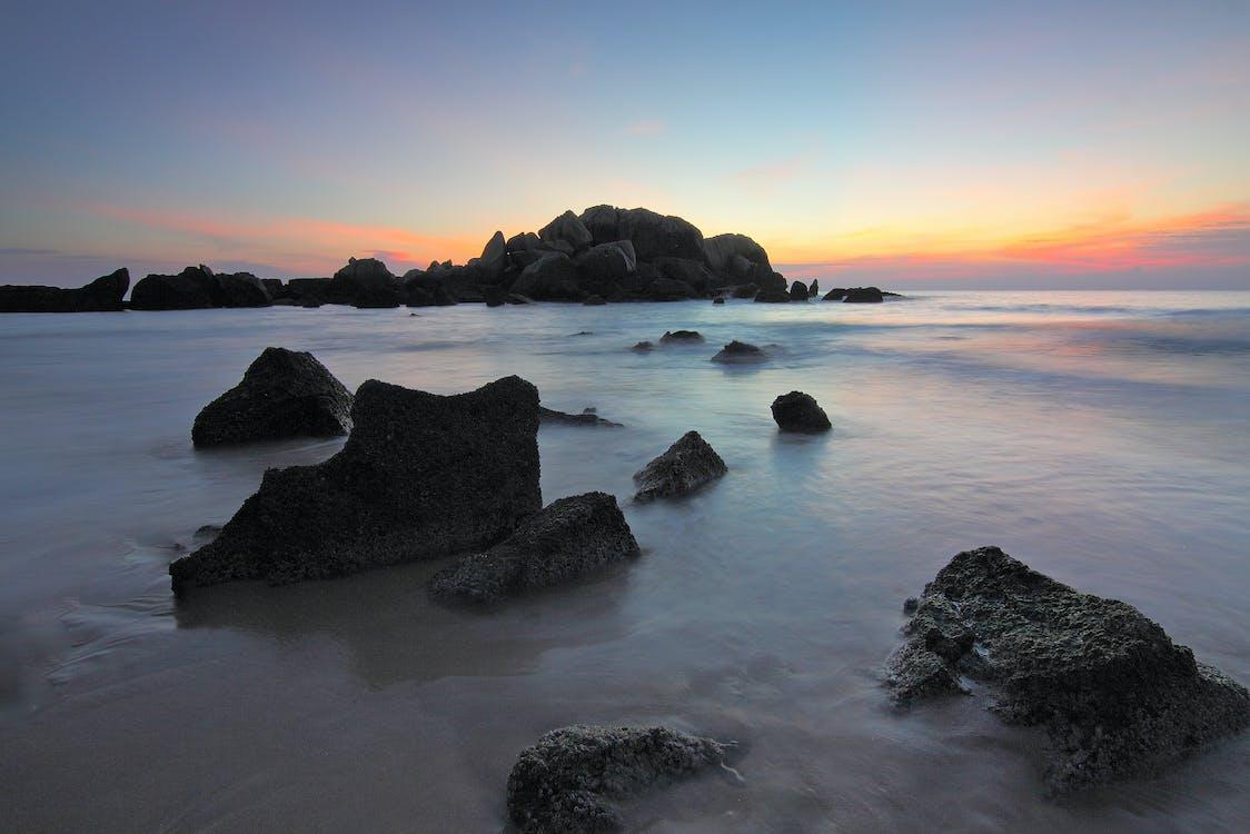 безтурботний, берег моря, вода