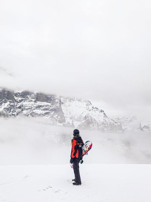 Foto stok gratis aktif, alam, badai salju, beku