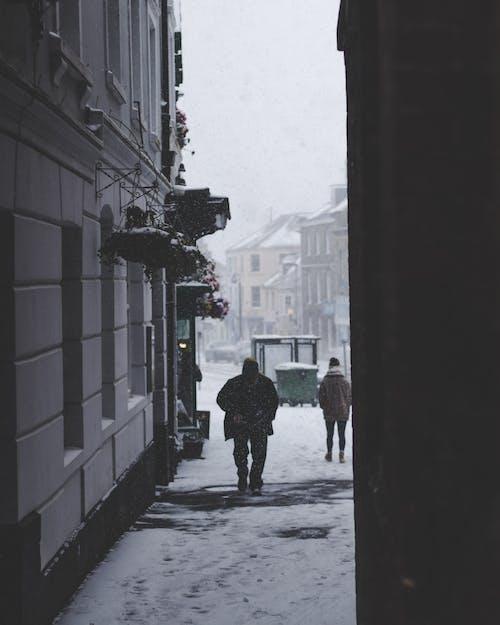 アダルト, おとこ, グレースケール, コールドの無料の写真素材