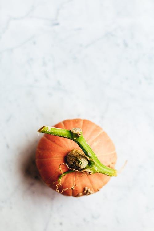 Orange Tomato on White Table