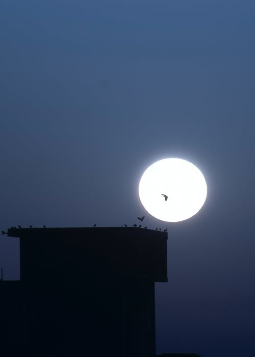 Silhouette of Building Under Full Moon