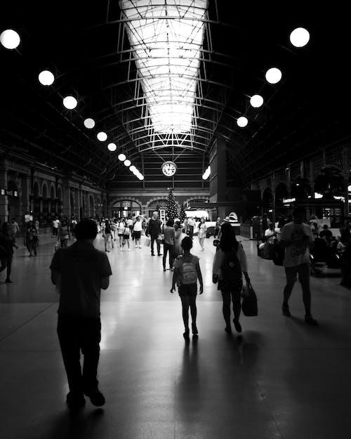 거리 사진, 기차, 대조, 바쁜의 무료 스톡 사진