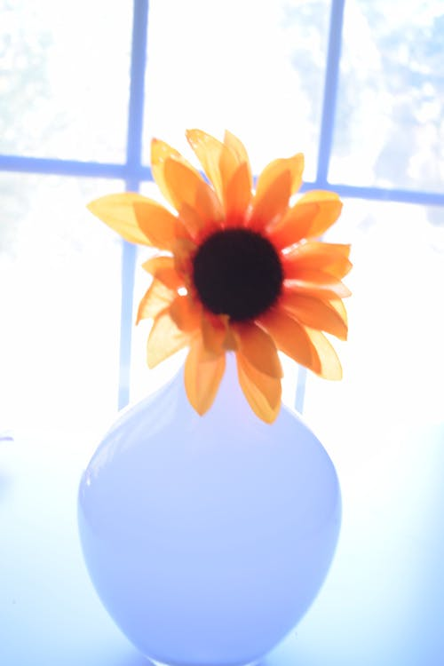Free stock photo of artificial flowers, flowers, orange, vase