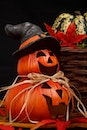 autumn, decoration, halloween
