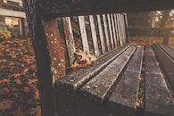 wood, bench, park