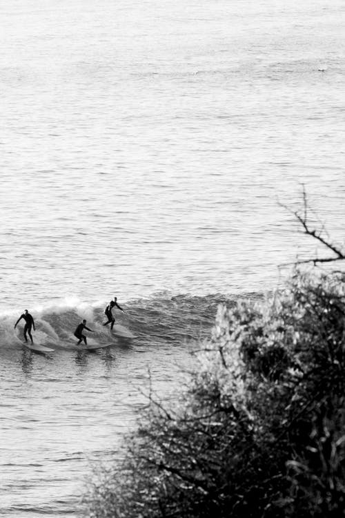 Surfers on Body of Water