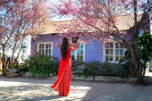 Woman in Red Dress Standing Under Pink Leaf Tree