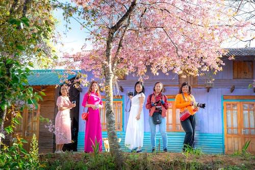Multiracial elegant women near blooming sakura and bright countryside house
