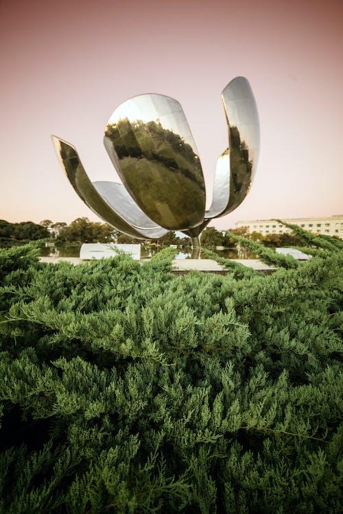 Foto d'estoc gratuïta de acer inoxidable, arbres, avets, cel