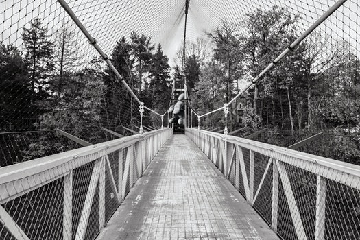 Free stock photo of black-and-white, bridge, suspension bridge, footbridge