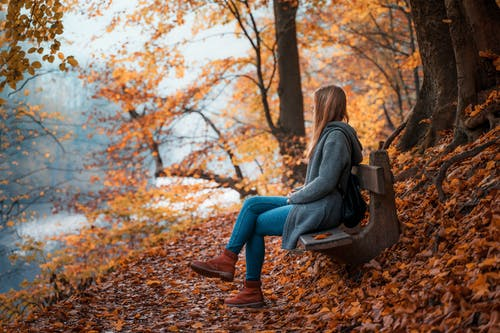 Woman in Gray Sweater and Blue Denim Jeans Sitting on Brown Wooden Bench Under Brown Trees