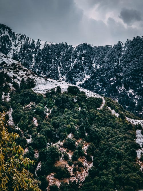 Free stock photo of green, green mountains, mobile wallpaper