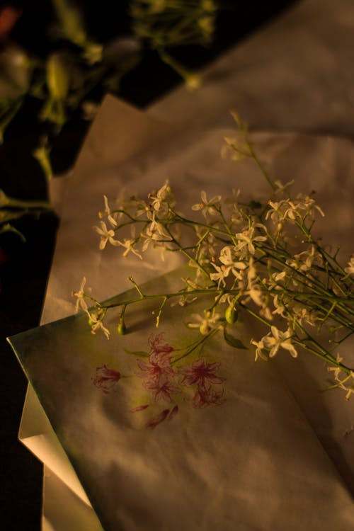 Gentle romantic flowers on paper sheet