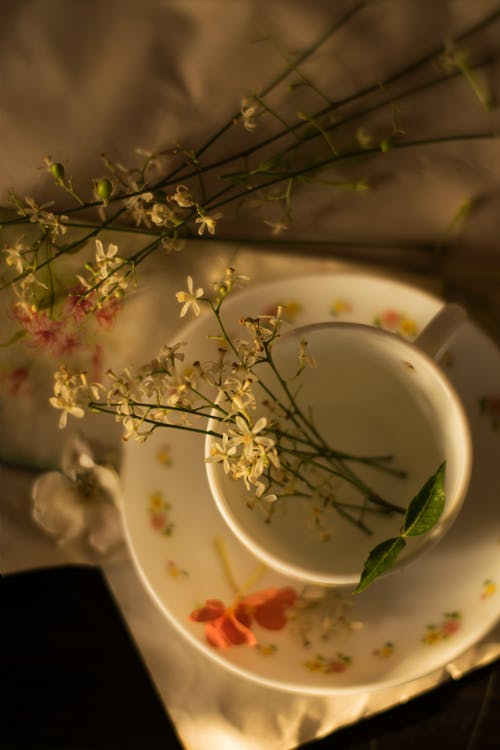 Photo Of Flowers On Cup