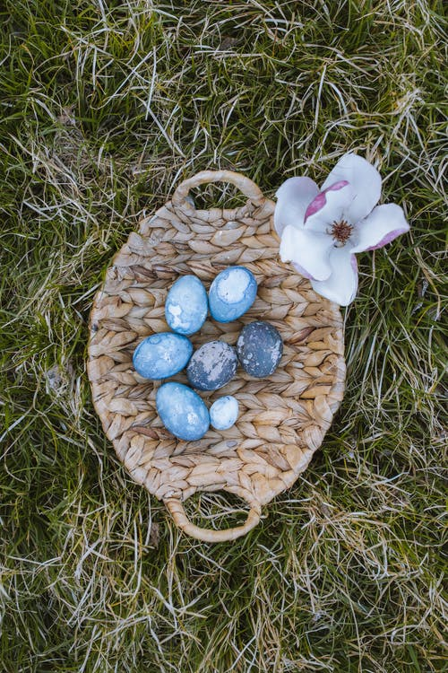 Woven Basket With Blue Eggs and a Flower