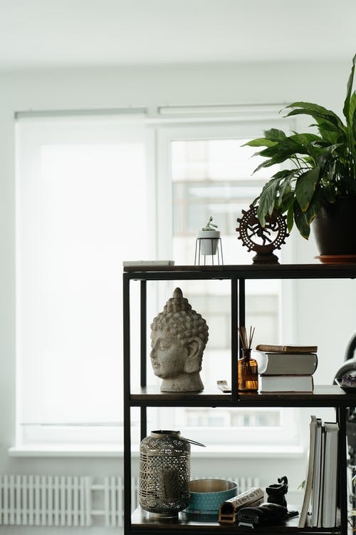 White Wooden Shelf With Green Plants