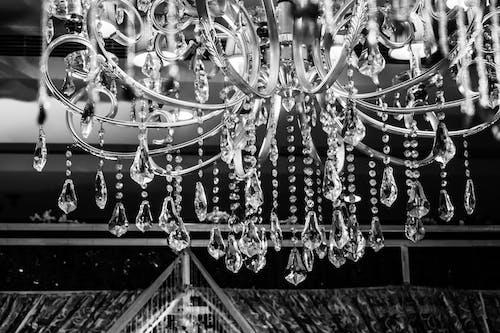 Foto d'estoc gratuïta de aranya, art, blanc i negre, disseny