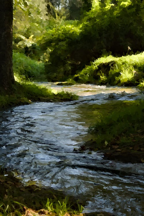 Free stock photo of abstract art, forest river, impressionism, light and shadow