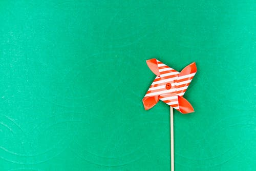 White and Red Paper Flower on Green Textile