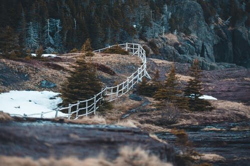 Forest and hilly terrain with fence